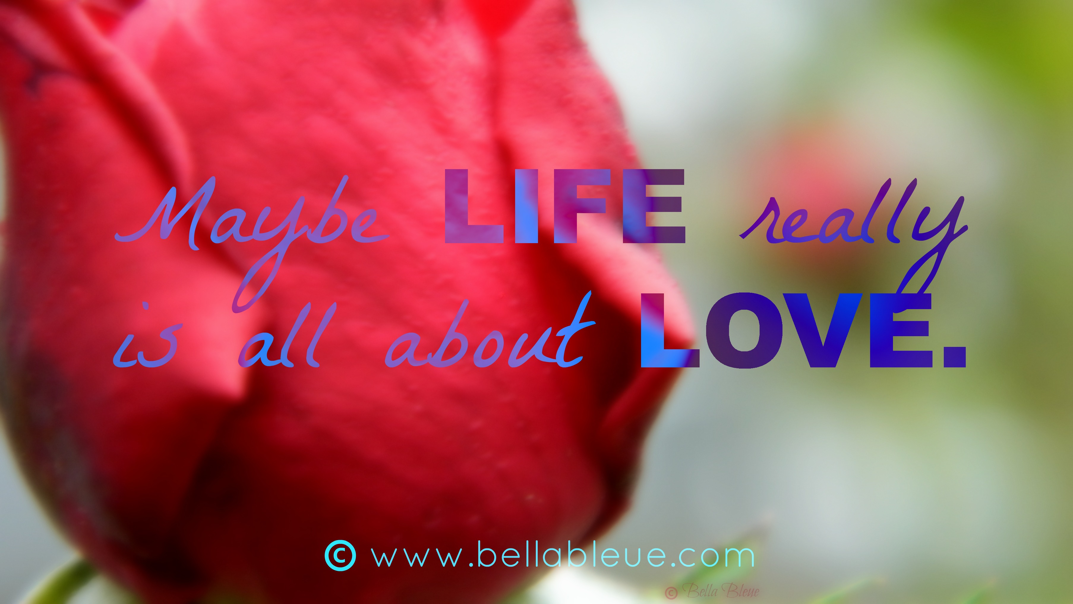 Love Life Quote – Bella Bleue Healing™